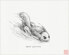 Wartortle  8 x 10 print pokemon drawing pokemon by RockyHammerEtsy