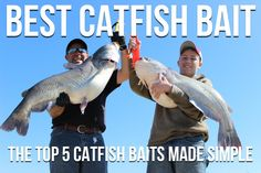Best Catfish Bait: The Top 5 Catfish Baits Made Simple. Use the right baits and you'll catch more catfish and it's easy with this simple guide.