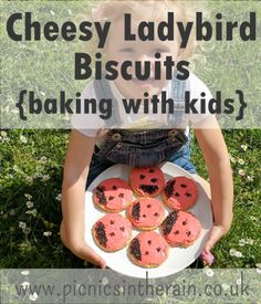 Cheesy Ladybird Biscuits - the perfect toddler recipe for your home preschool bugs or minibeast theme - simple and delicious! Preschool At Home, Toddler Preschool, Food Dye, Baking With Kids, Toddler Learning, Play To Learn, Biscuit Recipe, Toddler Meals, Picnics