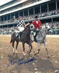 Secretariat and his groom
