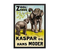 zoo-kaspar-og-hans-moder-zoo-16