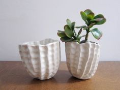 Bumpy Pinch Pot Planter, white White ceramic planter with pinched texture and hole for drainage. Clay Pinch Pots, Ceramic Pinch Pots, White Ceramic Planter, Slab Pottery, Pottery Vase, Ceramic Pottery, Ceramic Mugs, Ceramic Bowls, Indoor Flower Pots
