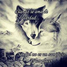 A Wolf thing Quotes En Espanol, Wolf Quotes, Wolf Love, Wolf Spirit, Spirit Animal, Romantic Quotes, Spanish Quotes, Life Inspiration, Life Quotes