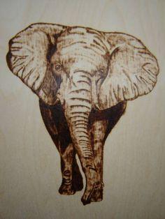 słoń rysunek - Szukaj w Google