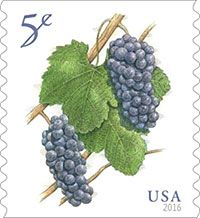 5-cent Grapes stamp