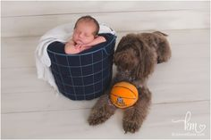 Butler basket ball, newborn baby, and labradoodle puppy - it doesn't get more prefect