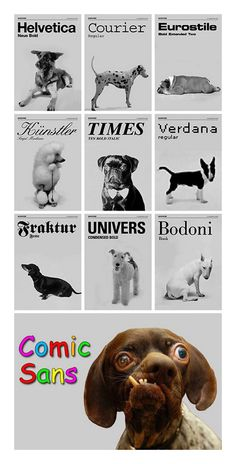 Do all dogs have their own typography?