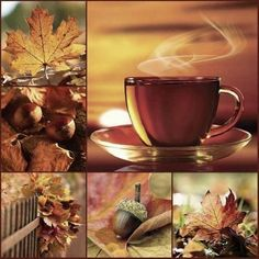 Mood board, Fall is a favorite season. Hallo November, Collages, Color Collage, Collage Art, Beautiful Collage, Autumn Aesthetic, Hello Autumn, Autumn Tea, Autumn Inspiration