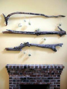 ramas de madera de deriva decorativas