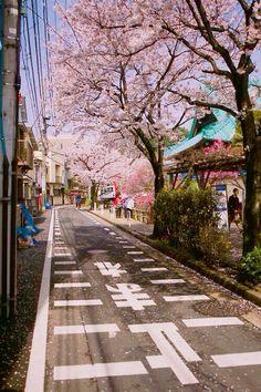smalltown street, Japan