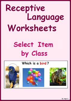 Receptive Language Worksheets -Select Item by Class- great printables for increasing receptive language skills, good for students with autism and special needs. #Autism For more resources follow https://www.pinterest.com/angelajuvic/autism-special-education-resources-angie-s-tpt-sto/