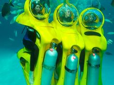 Stuart Cove's located in Nassau, The Bahamas rents personal submarines shaped like seahorses. Dive underwater to experience the amazing visibility of the Bahamas' pristine waters. Stuart Cove's offers a unique way to experience undersea life. Climb into your personal undersea bubble and go to a depth of 15 feet without any scuba diving or snorkeling experience.