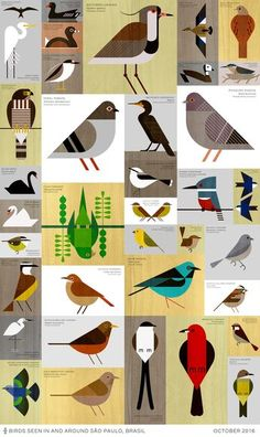 Scott Rebhuhn - Sao Paulo Birds - Abbildung, Best Picture For bird design For Your TasteYou are looking for something, and it is going to tell you exactly what you are looking for, and you didn't find that pi Vogel Illustration, Vogel Quilt, Bird Graphic, Charley Harper, Bird Quilt, Bird Drawings, Grafik Design, Bird Art, Bird Feathers