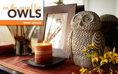 On the Prowl for Owls @ Pier1.com