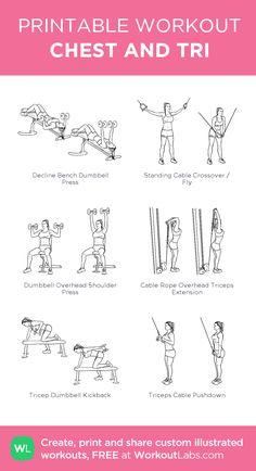 Handy workout plans which are simply practical for beginners, both male and women to tone up. Study this helpful fitness exercise pinned image ref 3852067727 today. Handy workout plans which are simply prac Chest And Tricep Workout, Chest Workout Women, Gym Workout Plan For Women, Triceps Workout, Chest Workouts, Workout Plans, Back Workouts, Bicep And Tricep Workout, Upper Body Workout For Women
