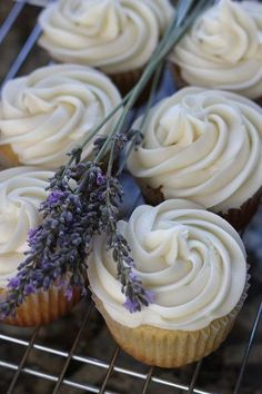 Honey lavender cupcakes with a honey cream cheese frosting. Honey lavender cupcakes with a honey cream cheese frosting. Cupcake Recipes, Baking Recipes, Cupcake Cakes, Dessert Recipes, Honey Cupcakes, Lavender Cupcakes, Cupcakes Cream Cheese Frosting, Just Desserts, Delicious Desserts