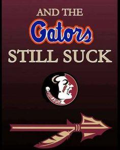 Gators Sucks Go Noles! Florida Gator Memes, Florida State Football, Florida State University, Florida State Seminoles, Florida Gators, College Football, Seminole Football, Football Stuff, Cubs Team