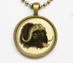 Animal Illustration Necklace - Wild Cattle Bos Mofchatus