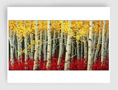 GICLEE Print of Original Oil Painting Canvas Print LANDSCAPE Painting  Aspens Painting Trees Painting on Etsy, $45.00