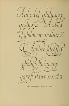 """M.S. Andrade - Ialian hand minuscules, 1721 Scan from: """"Alphabets old and new, for the use of craftsmen"""" by Lewis Foreman Day. Third Edition (published 1910) #ItalianHand #Calligraphy BookReaderImages.php (605×929)"""