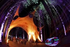 Electric Forest Girls | Electric Forest is returning June 28-July 1, 2012 to the beloved ...