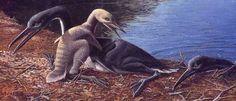 http://oceansofkansas.com/hesperornis.html
