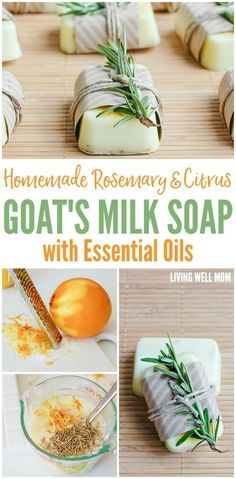 Soap-making is easier than you thought! Here's how to make homemade Rosemary Citrus Goat's Milk Soap Bars. With a perfect blend of essential oils, it's all-natural and great for your family or as a homemade gift! #homemadesoap