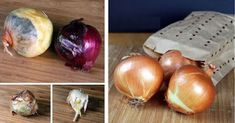 How to store Garlic & Onions last for months. As we all have experienced garlic grows a little green sprout out of the top of it and onions get moldy. If you´re planning on planting it, it works perfectly when garlic grows a sprout and … Storing Onions, Garlic Storage, Onion Storage, Garlic Sprouts, How To Store Garlic, Slow Cooker, Along The Way, Food Hacks, Food Tips