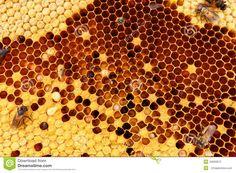 Beehive Texture Stock Photo - Image: 43569972