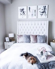 "16.3k Likes, 77 Comments - LIKEtoKNOW.it (@liketoknow.it) on Instagram: ""Velvet and faux throws and abstract art, chic up your bedroom with a little @liketoknow.it.home…"""