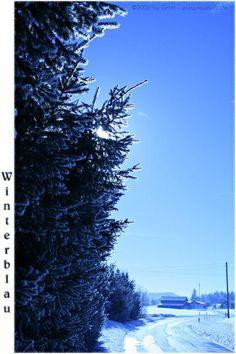 winterblue by Kiwisaft.de