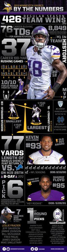 Minnesota Vikings 2013 Infographic