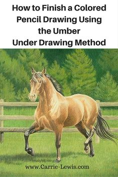By the time you reach the final steps in creating a colored pencil drawing, the process is pretty much universal. Let's look at the process for a drawing that began as an umber under drawing. http://www.carrie-lewis.com/how-to-finish-a-colored-pencil-drawing-using-the-umber-under-drawing-method/