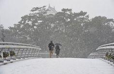 Snow scene of Kitakyushu, Kokura 2016 Japanese Landscape, Yamaguchi, Snow Scenes, Fukuoka, Culture, Explore, City, Outdoor, Image