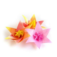 #Origami #Flowers   I have little opportunities to make a ne…   Flickr
