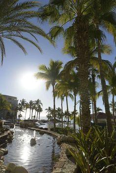 O Secrets Resort é um hotel apenas para adultos maiores de 18 anos. Tem uma característica mais intimista romântica e sofisticada perfeita para lua de mel. Realiza apenas um casamento por dia e tem um deck lindo para a cerimônia com um bar exclusivo com cadeiras de balaço, luzinhas penduradas e uma vista panorâmica do mar. Cabo San Lucas, Resorts, Cheers, River, Beach, Outdoor, Mexican People, Hanging Lights, Night Club City