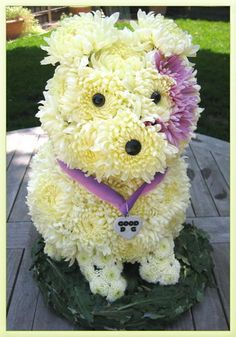Centerpiece of Attention ...  Flower Dog !