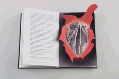 Harry Potter book redesign by Kincső Nagy