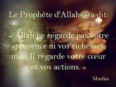 Islam. Rappels