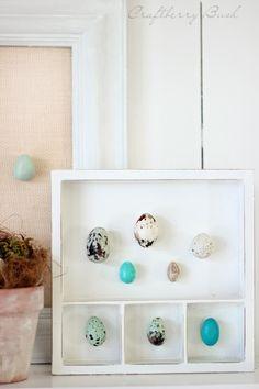 #DIY Polymer clay egg specimen tutorial - #Easter