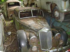 Sleeping beauties : Kaufdorf car junkyard, near Bern, Switzerland