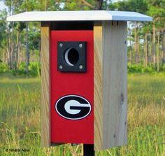 Georgia NCAA Bluebird/Songbird House