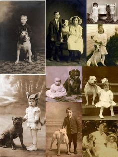 "The American Pittbull Terrier: an American tradition, a ""nanny dog,"" a loyal protector and companion...NOT a monster."