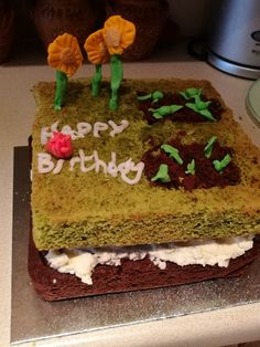 Garden Cake using Chocolate Bottom and Spinach Top. Time for a bit of sugarcraft Garden Birthday Cake, Garden Cakes, One Pot Dishes, Spinach, Vegetarian, Bread, Chocolate, Cooking, Desserts