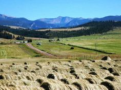 mountains, fields, ranch