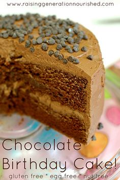 Chocolate Birthday Cake :: Gluten Free, Egg Free, Nut Free - Raising Generation Nourished