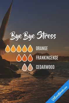 Bye Bye Stress Essential Oil Diffuser Blend
