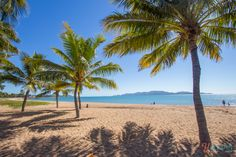 Things to see and do in Townsville - Queensland, Australia Best Beaches To Visit, Cool Places To Visit, Places To Travel, Queensland Australia, Australia Travel, Australia 2017, Holiday Destinations, Travel Destinations, Great Barrier Reef