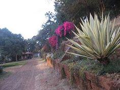 Kijabe Kenya