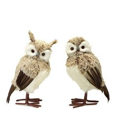 Look at this #zulilyfind! Light Furry Owl Figurine Set #zulilyfinds
